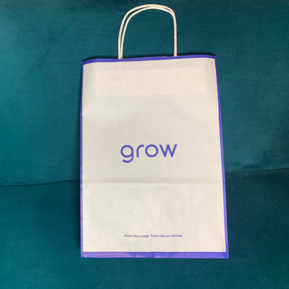 Single Colour Paper Carrier Bag